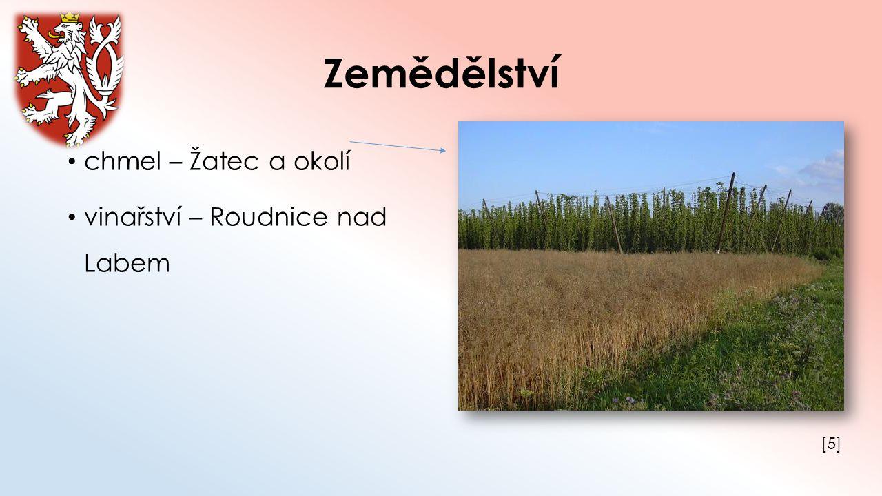 Zemědělství chmel – Žatec a okolí vinařství – Roudnice nad Labem [5]